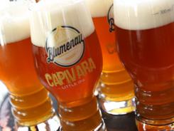 Com 70% de venda de especiais, Cerveja Blumenau comemora o primeiro fim de semana de Oktoberfest